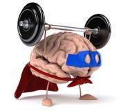 Super hersenen Royalty-vrije Stock Foto