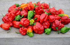 Super Hot Peppers Stock Photo