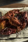 Super Hot Spicy Scorpion Bhut Jolokia Pepper Stock Photography