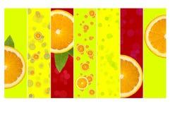 Super Juicy Orange Background. A bright background full of juicy orange slices Royalty Free Stock Photography