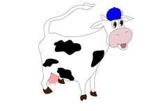 Super krowa Zdjęcia Stock