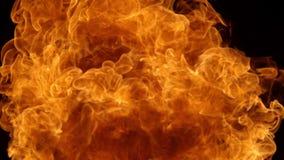 Super langzame die motie van brandontploffing op zwarte achtergrond wordt geïsoleerd stock footage