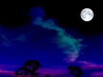 super maan op de donkere nachthemel over boom Stock Fotografie