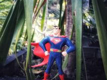 Super man royalty free stock photography