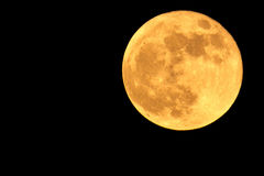 Super moon. On black backgroun Royalty Free Stock Images