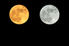 Super moon. On black background Royalty Free Stock Photo