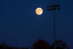 Super Moon and Field Royalty Free Stock Photos