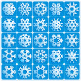 Super natural snowflakes. Set is 25 super natural vector snowflakes Stock Photos