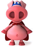 Super pig Stock Image