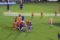 Super Rugby Game Players Line-out Throw Royalty Free Stock Photo