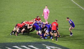 Super Rugby Game Players Scrum Royalty Free Stock Images