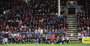 Super Rugby Game Spectators Royalty Free Stock Images