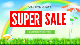 Super sale summer background. Sale of all items. Rainbow above green field. Grass, daisy flowers, ladybugs in grass on Stock Photo