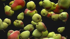 Super slow motion: falling pear against black background. High quality 4K seamless loopable CG animation. 3D. Rendering vector illustration