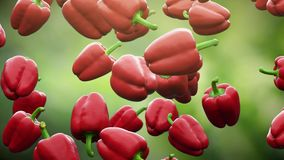 Super slow motion: falling red pepper against green background. High quality 4K seamless loopable CG animation. 3D. Rendering vector illustration