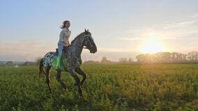 Super slow motion of young girl riding on a horse on the meadow during sunset. stock footage