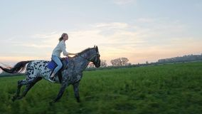 Super slow motion of young girl riding on a horse on the meadow during sunset.