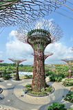 Super trees at Gardens by the Bay Royalty Free Stock Photo