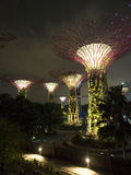 Super Trees at Gardens by the Bay Stock Photos