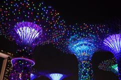 Super Trees Night Scene at Gardens by the bay Royalty Free Stock Images