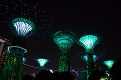 Super Trees Night Scene at Gardens by the Bay, Singapore Stock Image