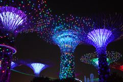 Super Trees Night Scene at Gardens by the Bay, Singapore Royalty Free Stock Images