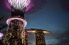 Super Trees Night Scene at Singapore Gardens by the Bay. Supertree Tree Grove & Purple features with Marina Bay Sands Hotel at Gardens by the bay Singapore royalty free stock photography