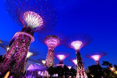 Super Trees at Singapore Gardens by the Bay Stock Photo