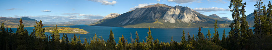 Super wide panoramic view of Bove Island on Tagish Lake Royalty Free Stock Photography