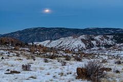 Super Wolf Blood Moon Pine, Colorado stock image
