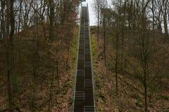 Super wysoki schody niebo Trought drzew liście i drewna Prosto w górę jeden kreskowego outdoors schody zdjęcie royalty free