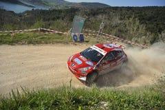 Super2000 Sammlung Peugeot-207 Stockbilder