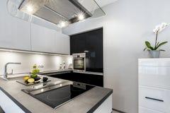Superb lyxigt kök med granitworktop royaltyfri bild