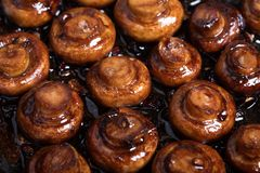 Superb sauteed mushrooms. Close up shot of fried mushrooms in balsamico sauce with garlic. Perfect vegeterian side dish royalty free stock photo