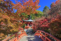 Superb view, fall color at Daigoji temple, Japan in the autumn Stock Photos