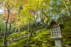 Superb view, fall color at Jojakko-ji Temple, Japan in the autum Stock Photo