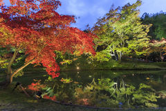 Superb view, fall color at Kodaiji Zen Temple, Japan in the autu Royalty Free Stock Images