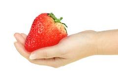 Superbe-grande fraise rouge dans une main Images stock