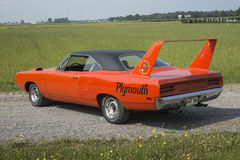Superbird Stock Foto's