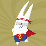 Superbunny in a red cloak Royalty Free Stock Photos