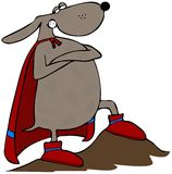 Superdog Imagem de Stock Royalty Free