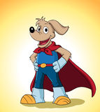 Superdog Royalty Free Stock Photo