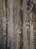 A superfície é de madeira muito velho Foto de Stock