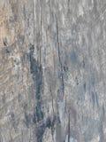 A superfície Foto de Stock