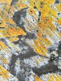 superfície Foto de Stock
