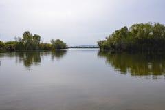 A superfície calma do lago Fotos de Stock Royalty Free