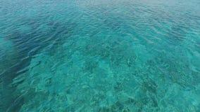 Superfície calma surpreendente do oceano no azul e no verde video estoque