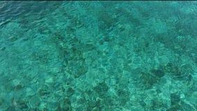 Superfície calma surpreendente do oceano no azul e no verde vídeos de arquivo