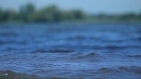 Superfície clara da água com as ondas do ponto baixo das ondinhas video estoque