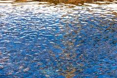 Superfície da água de fluxo foto de stock royalty free